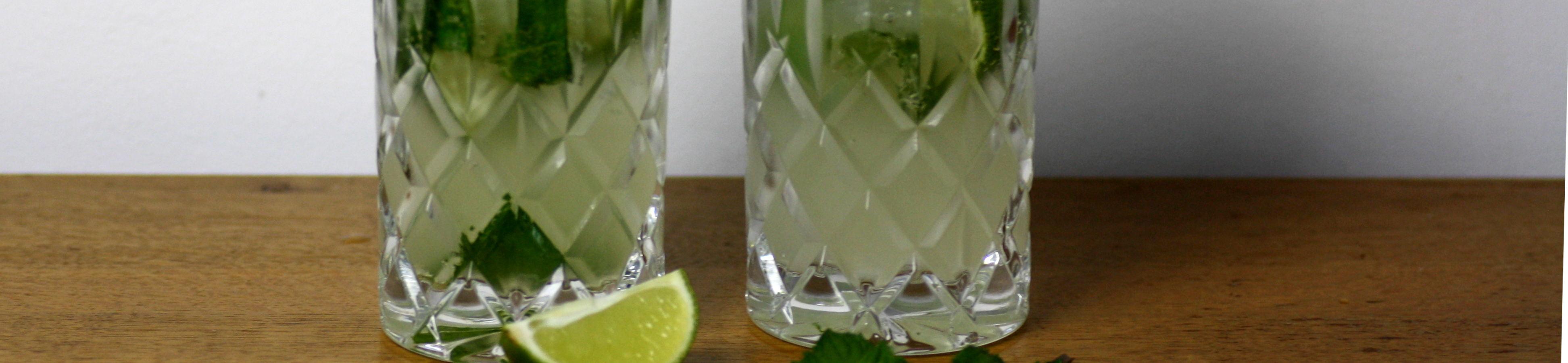 Vodka Honig Mojito
